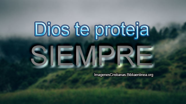 Frases Cristianas Dios te proteja