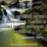 Salmos 49:5 Por qué he de temer en los días de adversidad