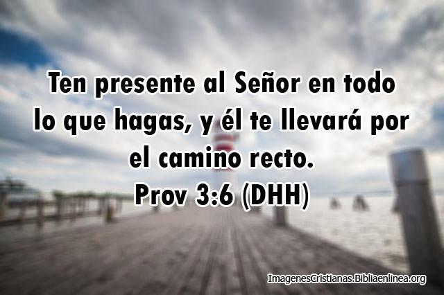 Proverbios en Imagen