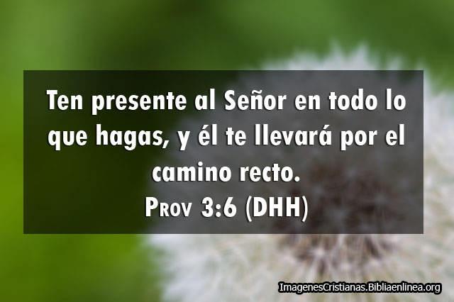 Proverbios ten presente a Dios en Imagenes