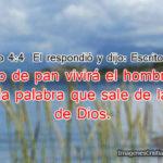 Frases de Jesus de la Biblia con Imagenes