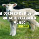 Imágenes Cristianas: el Cordero de Dios, que quita el pecado del mundo