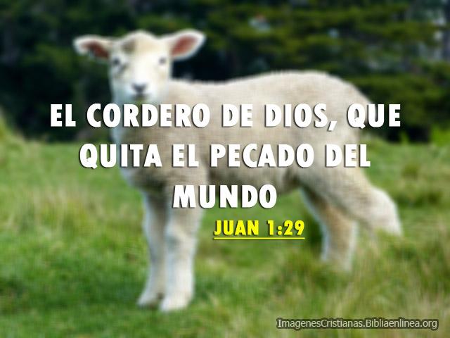 Imagenes Cristianas El Cordero de Dios