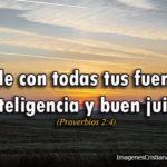 Proverbios 2:4 Pide con todas tus fuerzas inteligencia