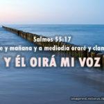 Salmos 55: 17 Tarde y mañana y a mediodía oraré y clamaré, Y él oirá mi voz
