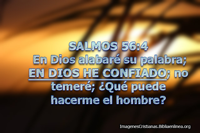 Salmos Imagen