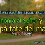[…] honra al Señor y apártate del mal: Prov 3:7 [DHH]