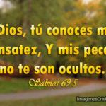 Salmos 69:5 Dios, […] mis pecados no te son ocultos