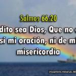 Salmos 66:20 no echó de sí mi oración, ni de mí su misericordia