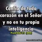 Mejor Consejo de Proverbios para Usted