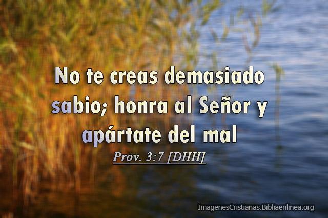 Proverbios Imagenes