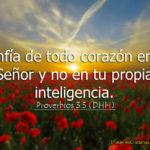 Proverbios: Confía de todo corazón en el Señor y no en tu propia inteligencia