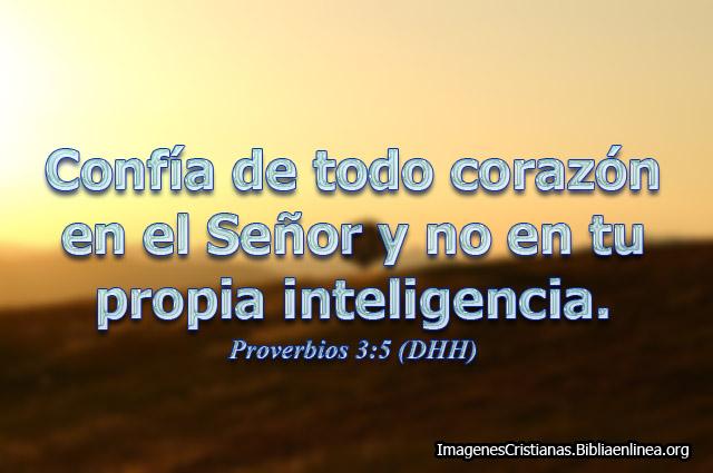 Proverbios imagenes 004