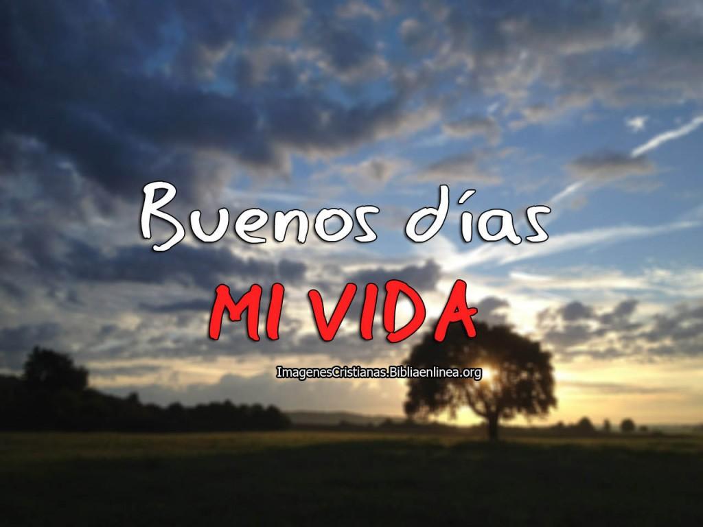 Buenos dias mi vida Imagenes