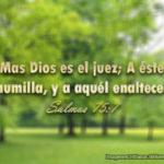 Salmos 75:7 Mas Dios es el juez