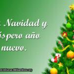 Textos Cristianos de Navidad