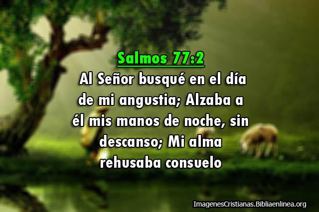 Imagenes Salmos buscar al Señor en el dia de la angustia