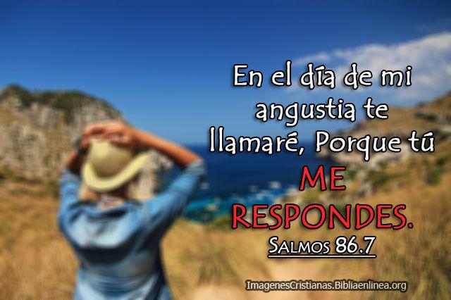 Imagen de Salmos tu me respondes