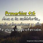 Imagenes de Proverbios 4:6 Ama a la sabiduría, no la abandones