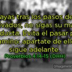 Proverbios para hoy: No vayas tras los pasos de los malvados