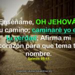 Imágenes de Salmos 86:11 Enséñame, oh Jehová, tu camino
