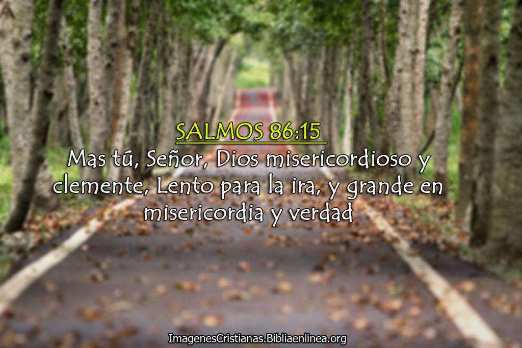 Imagenes de Salmos Grande en Misericordia el Señor