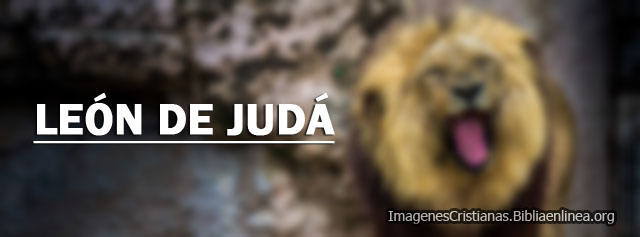Imagenes del Leon de Juda