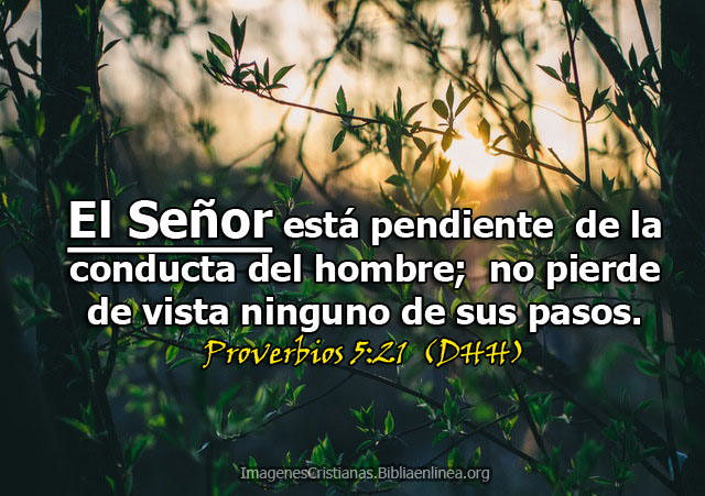 Proverbios 5