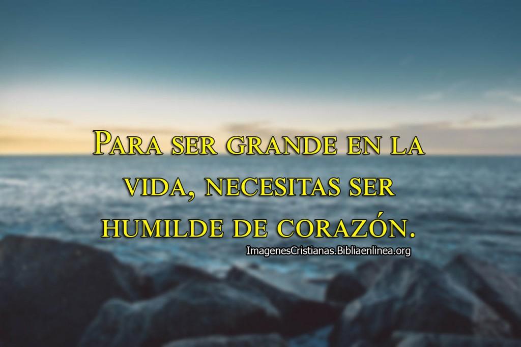 Para ser grande en la vida necesitas ser humilde de corazón.