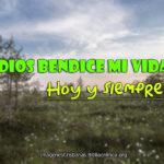 Imágenes Cristianas: Dios bendice mi vida