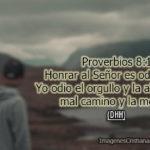 Proverbios de Yo odio el orgullo y la altanería