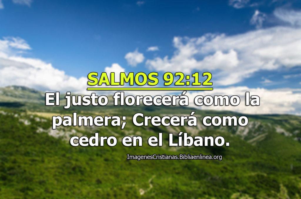 el justo florecera imagen cristiana salmos
