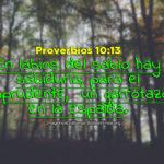 Proverbios acerca de los sabios y los imprudentes