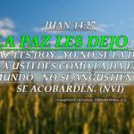 imagenes cristianas de paz con pasajes