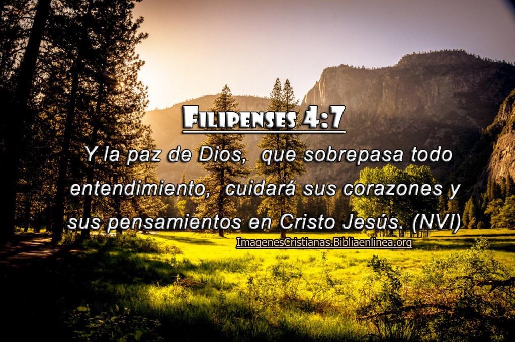 imagenes cristianas la paz del Señor