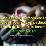 Salmos 103:13 Como el padre se compadece de los hijos