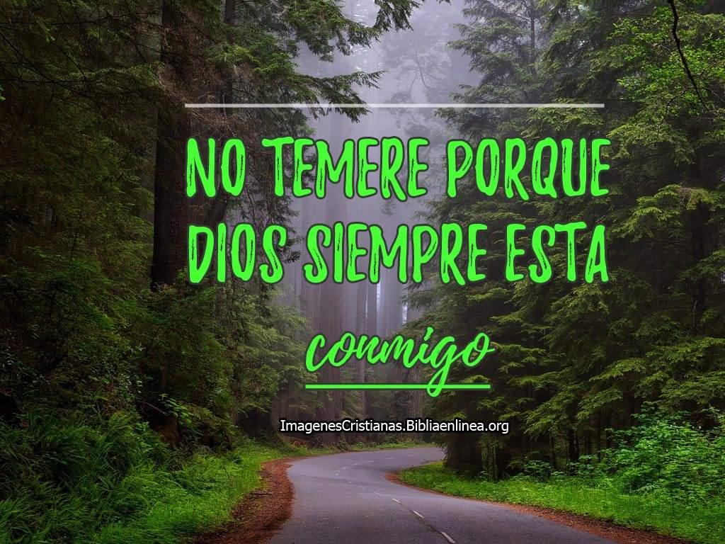 Descargar Imagenes Cristianas: Imagenes Cristianas Para Descargar Y Subir A Instagram