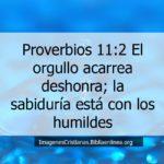 Proverbios acerca de los orgullosos