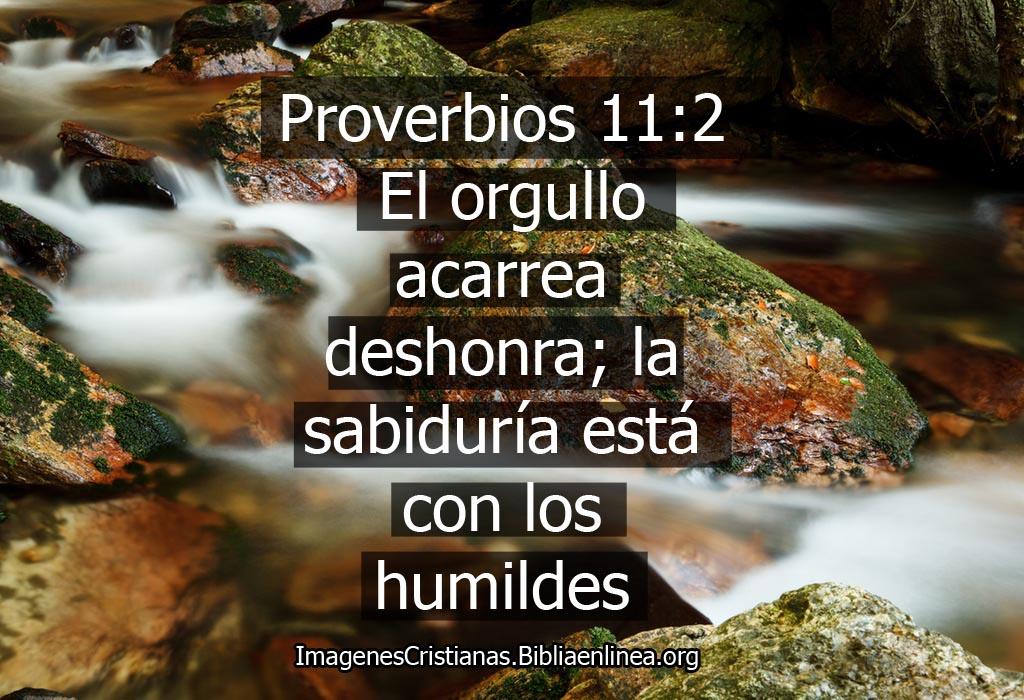 Proverbios para facebook