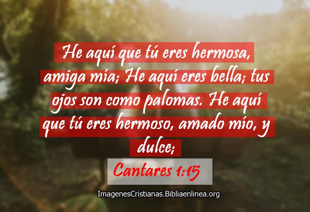 Citas Biblicas De Amor Imagenes Cristianas