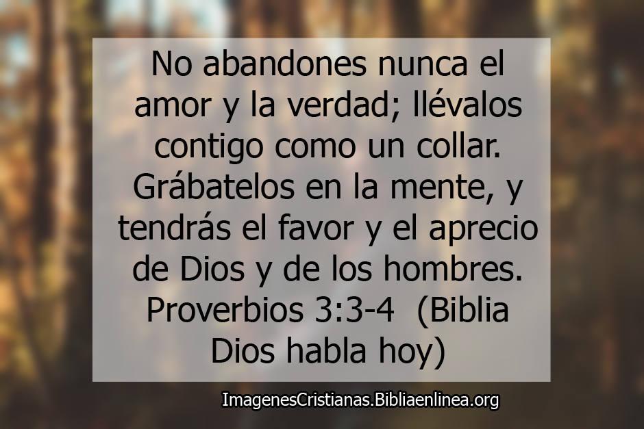 Proverbios de amor en la biblia