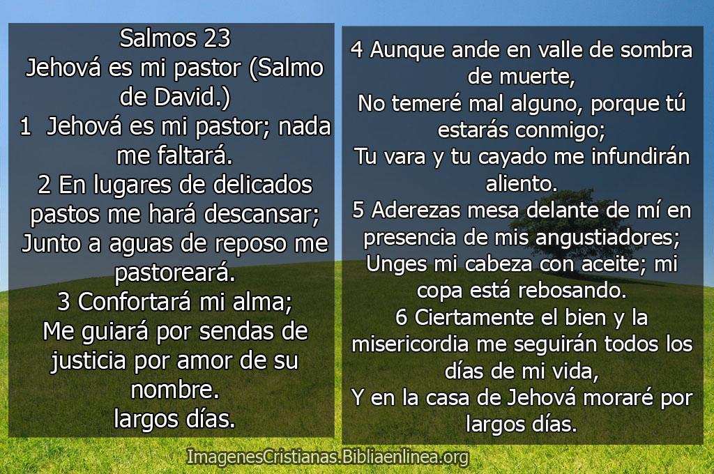 Imagenes salmos 23