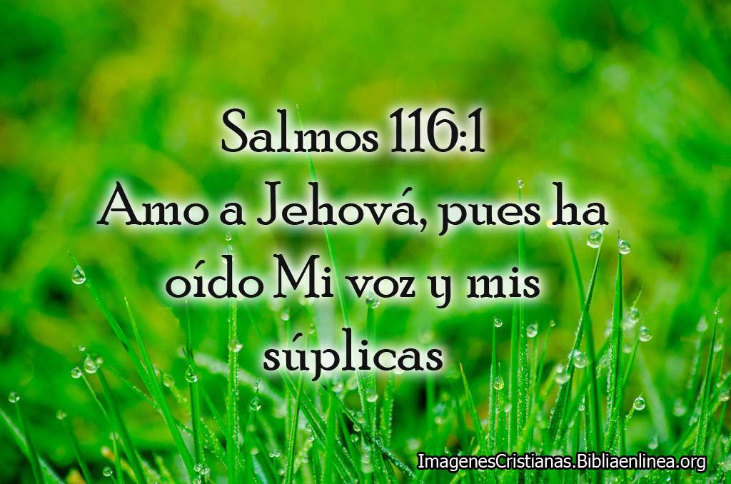 Salmos con imagenes amor a jehova