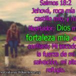 Versículos donde sale Dios es mi fortaleza