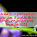 El deseo de los justos siempre resulta bien (Proverbios )