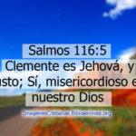 Salmos 116:5 Clemente es Jehová, y justo; Sí