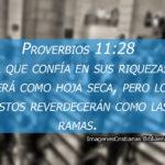 Proverbios 11:28 El que confía en sus riquezas, caerá como hoja seca