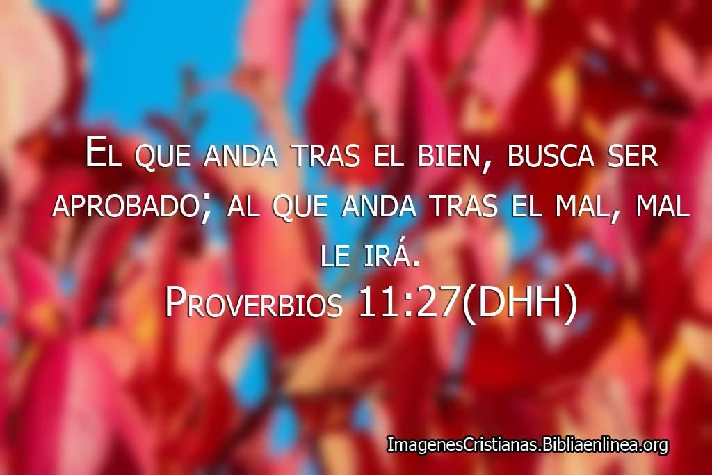 Imagenes proverbios el que anda tras el bien