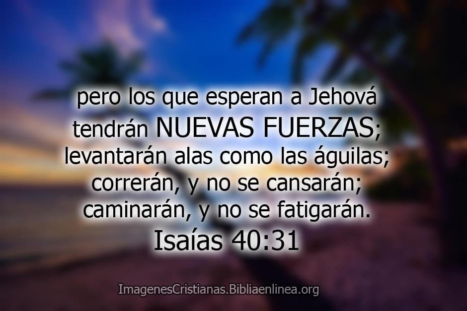 Imagenes con pasajes biblicos para facebook