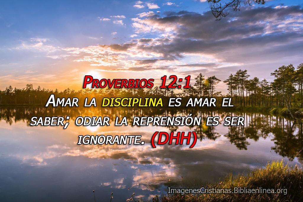 Imagenes cristianas amar la disciplina